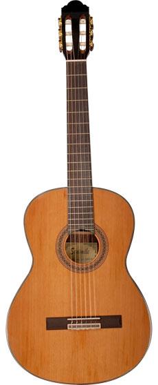 PURAVIDA SC-03930 Guitarra