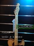 Fender American Deluxe Telecaster Thinline-Art (2)
