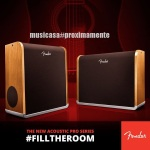fender-acoustic-pro-series-_4306034937199578441_n