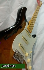 UNBOX Guitarra Fender Eric Johnson Thinline Strat (7)